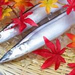 """旬の「サンマ」今季は豊漁!""""脂ノリ良し""""秋刀魚を選ぶコツ・調理ポイントや嬉しい栄養素も紹介"""