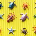 """プラスチックを""""有害""""とする風潮、海や川に捨てる「マナーの悪さ」にマツコ&有吉の回答が話題"""