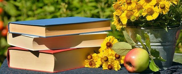 Free photo: Books, Read, Garden, Sun Brews - Free Image on Pixabay - 1757734 (125)