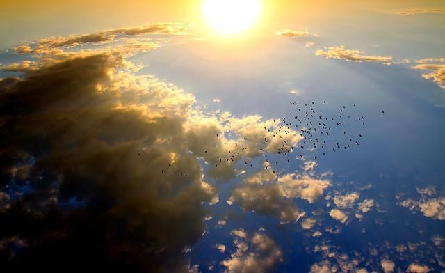 Free photo: Sunset, Birds, Cloud, Sun, Sky, Red - Free Image on Pixabay - 1625080 (416)