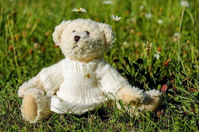 Free photo: Teddy, Plush, Bears, Cute - Free Image on Pixabay - 1623436 (590)