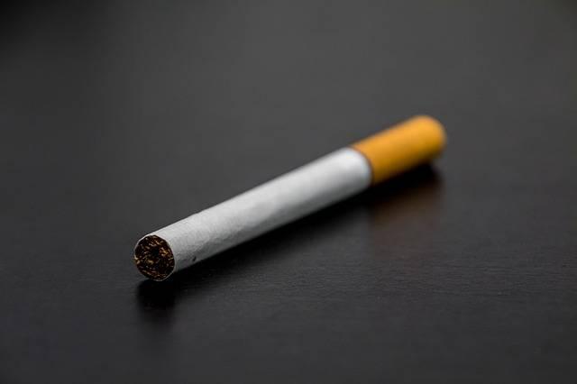 Free photo: Cigarette, Smoking, Tobacco - Free Image on Pixabay - 1699513 (2009)