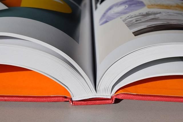 Free photo: Books, Resources, Reading - Free Image on Pixabay - 1920762 (2842)