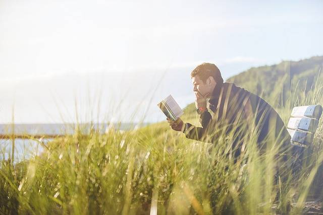 Free photo: Bench, Grass, Man, Person, Reading - Free Image on Pixabay - 1853961 (2843)