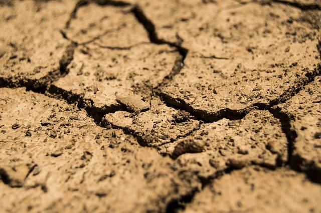 Free photo: Drought, Aridity, Dry, Earth, Soil - Free Image on Pixabay - 780088 (2974)