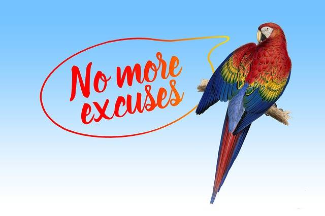 Free illustration: Excuse Me, Balloon, Parrot, Ara - Free Image on Pixabay - 1848722 (3204)