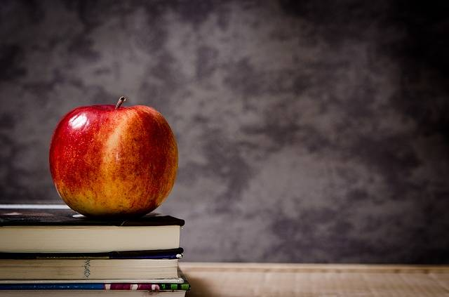 Free photo: Apple, Education, School, Knowledge - Free Image on Pixabay - 256263 (3561)