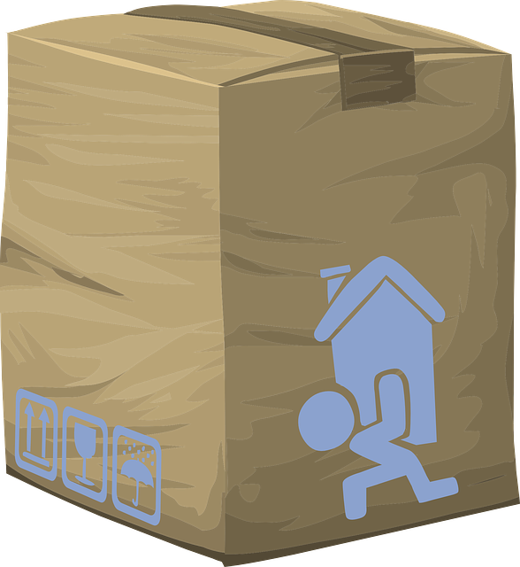 Free vector graphic: Package, Delivery, Box, Cardboard - Free Image on Pixabay - 575402 (4686)