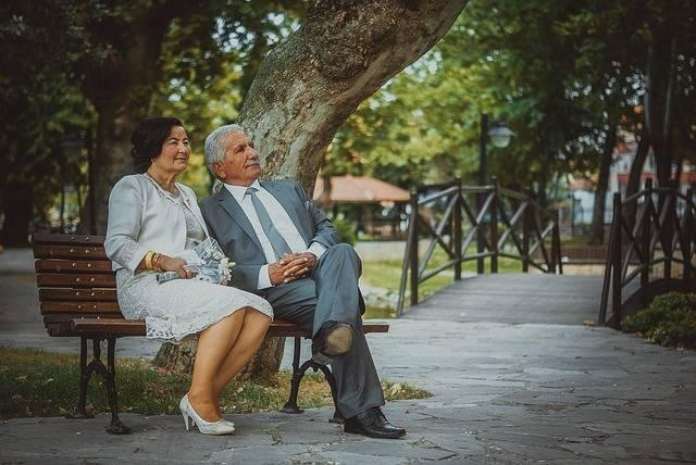 Free photo: Son In Law, Bridal, Turkey, Wedding - Free Image on Pixabay - 886844 (5003)