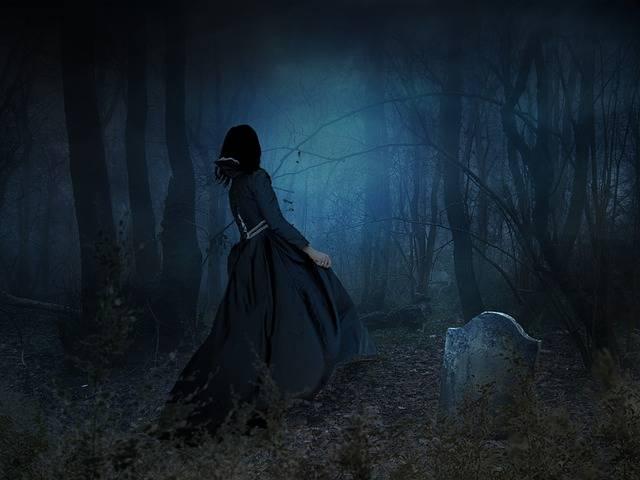Free illustration: Scary, Eerie, Spooky, Dark, Fog - Free Image on Pixabay - 666620 (5007)