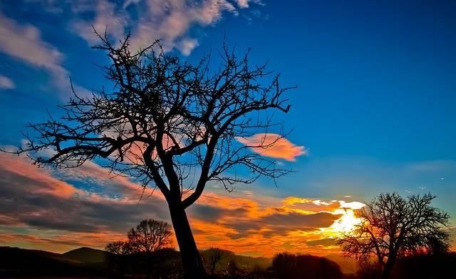 Free photo: Sunset, Evening Sky, Afterglow - Free Image on Pixabay - 229335 (5202)