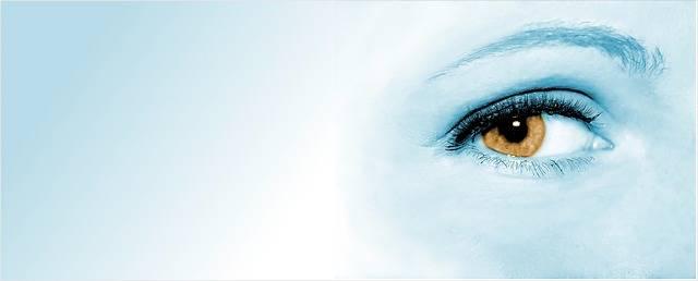 Free photo: Eye, Woman, Face, Pupil - Free Image on Pixabay - 428390 (7240)