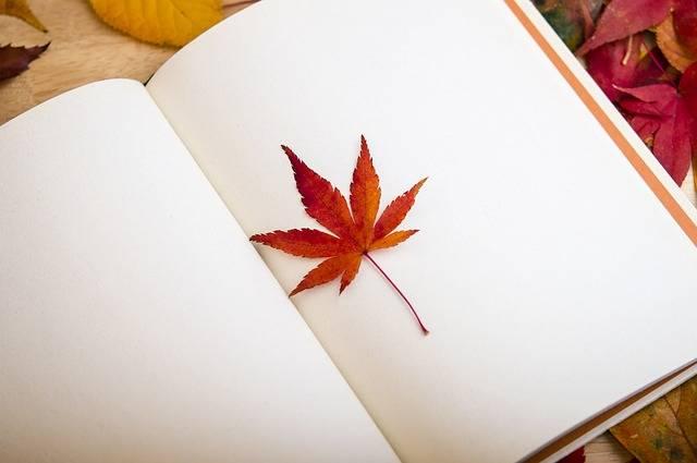 Free photo: Maple Leaf, Book, Reading - Free Image on Pixabay - 638022 (7605)