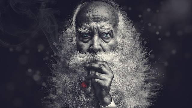 Free illustration: One, Old, Bart, Grey, Age, Face - Free Image on Pixabay - 2003970 (8105)