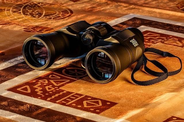 Free photo: Binoculars, Birdwatching, Spy Glass - Free Image on Pixabay - 431488 (11567)