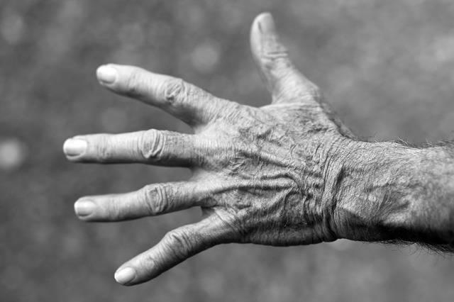 Free photo: Hand, Elderly Woman, Wrinkles - Free Image on Pixabay - 351277 (12206)