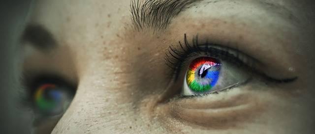 Free illustration: Eye, Google, Detail, Macro, Face - Free Image on Pixabay - 1686932 (13303)