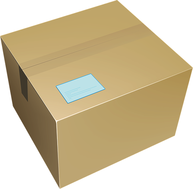 Free vector graphic: Box, Paper, Delivery Box - Free Image on Pixabay - 1252639 (15798)