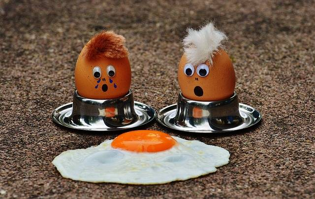 Free photo: Egg, Fried, Mourning, Fun, Funny - Free Image on Pixabay - 1364869 (16171)
