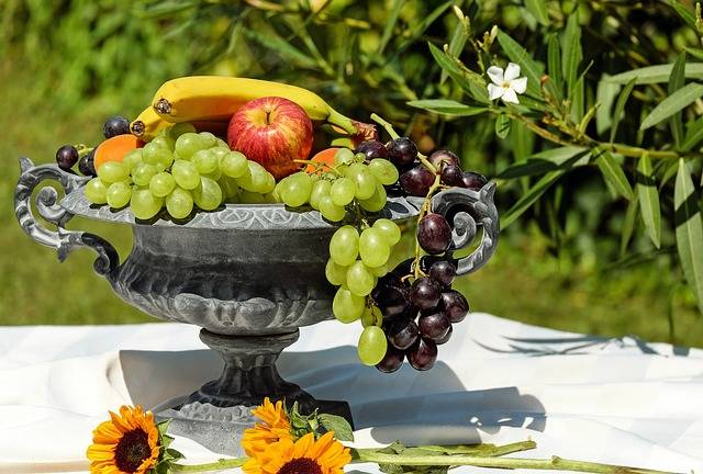 Free photo: Fruit Bowl, Shell, Fruit, Fruits - Free Image on Pixabay - 1600003 (17024)
