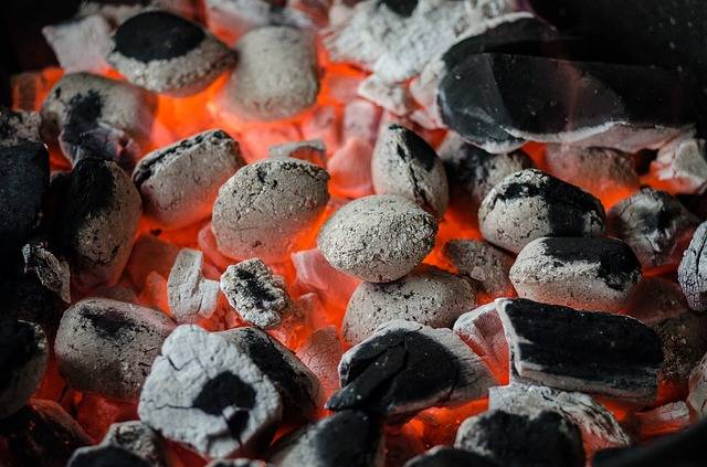 Free photo: Bbq, Barbecue, Coal, Flame, Grill - Free Image on Pixabay - 810545 (17465)