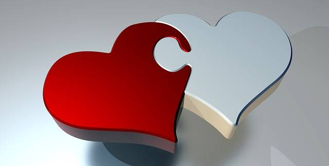 Free illustration: Puzzle, Heart, Love, Two Hearts - Free Image on Pixabay - 1721592 (22944)