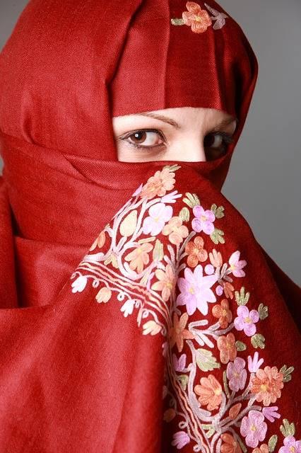 Free photo: Muslima, Muslim Woman, Eyes - Free Image on Pixabay - 1331992 (26070)