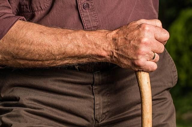 Free photo: Hand, Walking Stick, Arm, Elderly - Free Image on Pixabay - 588982 (27271)