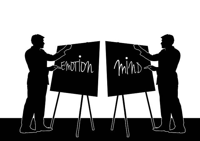 Free illustration: Man, Presentation, Feeling, Mind - Free Image on Pixabay - 273397 (27574)