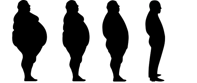 Free illustration: Lose Weight, Fat, Slim, Diet, Loss - Free Image on Pixabay - 1911605 (27886)