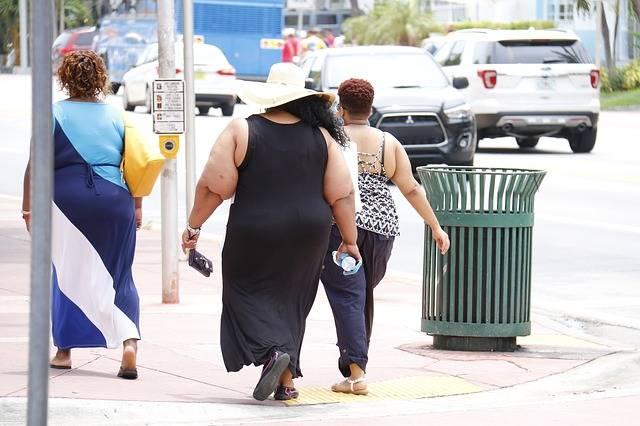 Free photo: Obesity, Fat, Nutritionist, City - Free Image on Pixabay - 993126 (27888)