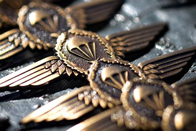 Free photo: Bundeswehr, Jump Wings, Skill, Army - Free Image on Pixabay - 79561 (28438)