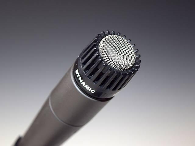 Free photo: Microphone, Mic, Dynamic, Audio - Free Image on Pixabay - 398738 (33831)