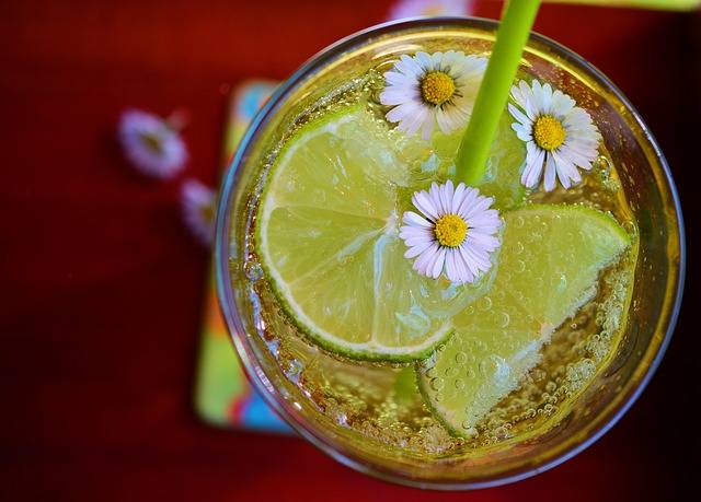 Free photo: Lime, Erfrischungsgetränk, Detox - Free Image on Pixabay - 2348450 (35267)