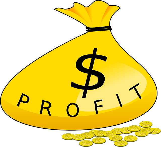 Free vector graphic: Money, Bag, Profit, Gold, Coins - Free Image on Pixabay - 40603 (37047)