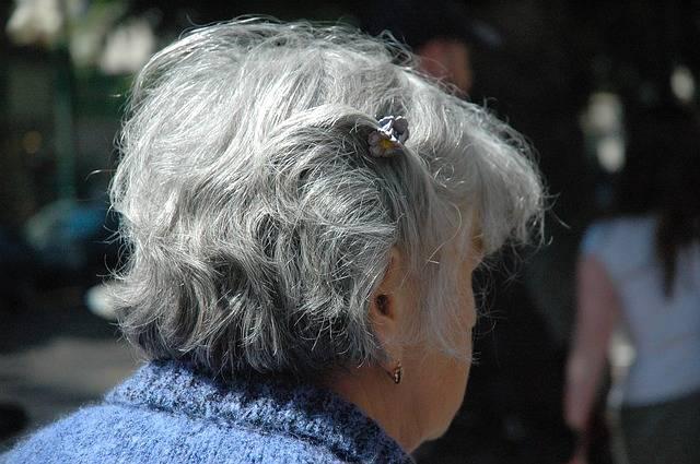 Free photo: Woman, Senior, Citizens, Female - Free Image on Pixabay - 208723 (40261)