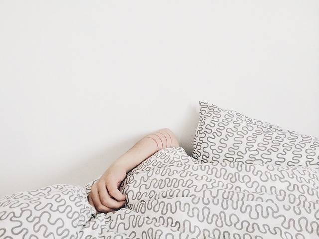 Free photo: Sleeping, Bed, Covers, Pillows, Arm - Free Image on Pixabay - 690429 (41955)
