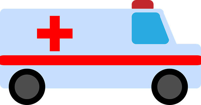 Free vector graphic: Ambulance, Hospital, Medical - Free Image on Pixabay - 2411793 (42729)