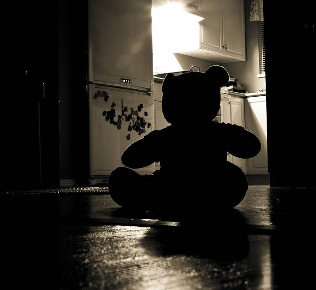 Free photo: Teddy Bear, Silhouette, Evil, Night - Free Image on Pixabay - 440498 (45165)