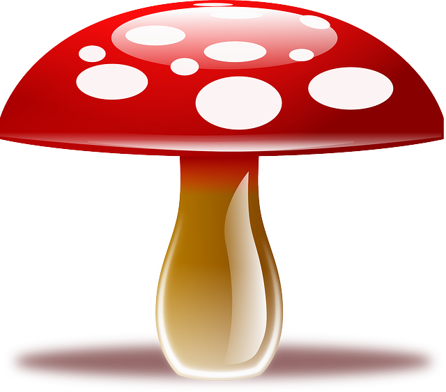Free vector graphic: Amanita Muscaria, Fly Agaric - Free Image on Pixabay - 159452 (46011)