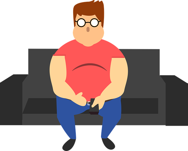 Free vector graphic: Man, Fat, Sofa, Fatness, Human, Guy - Free Image on Pixabay - 2288176 (46084)