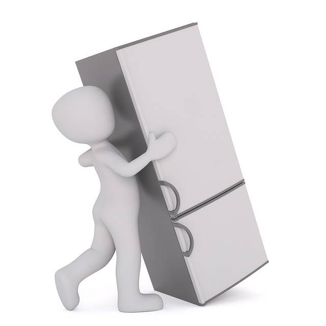 Free illustration: Refrigerator, Moving Companies - Free Image on Pixabay - 1889068 (46228)