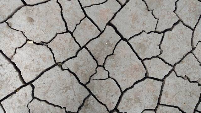 Free photo: Cracks, Dry, Ground, Pattern - Free Image on Pixabay - 2099531 (46302)