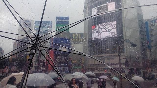 Free photo: Japan, Tokyo, Shibuya, Rain - Free Image on Pixabay - 1160738 (49379)