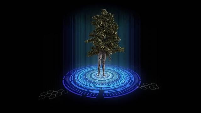 Free illustration: Teleportation, Tree, Nature, Trunk - Free Image on Pixabay - 2101465 (49690)