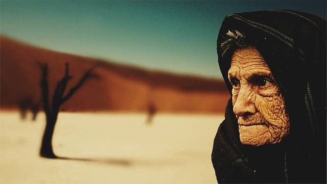 Free photo: Old Woman, Desert, Old Age, Bedouin - Free Image on Pixabay - 574278 (50249)