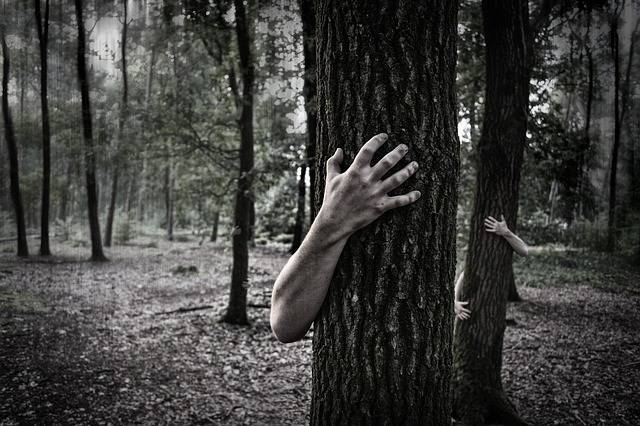 Free photo: Hands, Trunk, Creepy, Zombies - Free Image on Pixabay - 984032 (51372)