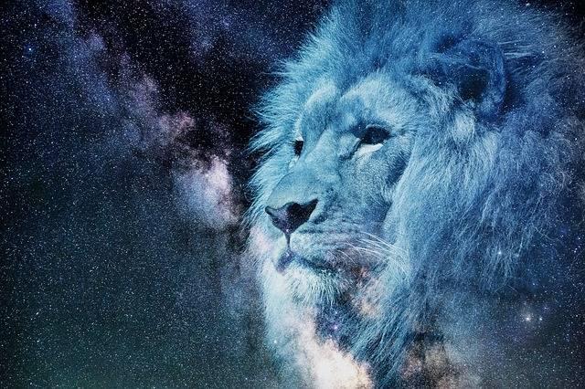 Free illustration: Leo, Starry Sky, Night, Blue - Free Image on Pixabay - 2400168 (51382)