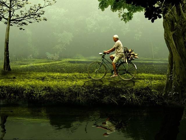 Free photo: Man, Old, Bike, Nature, Green - Free Image on Pixabay - 471192 (51575)