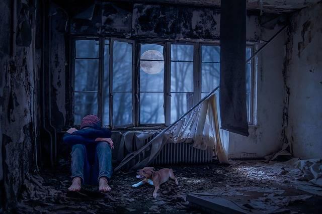 Free photo: Young People, Alone, Sad, Dog, Room - Free Image on Pixabay - 2770146 (54188)